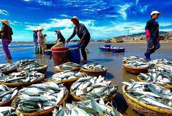 Nông nghiệp Việt Nam được lợi thế nào khi Hiệp định EVFTA có hiệu lực? - Ảnh 1.