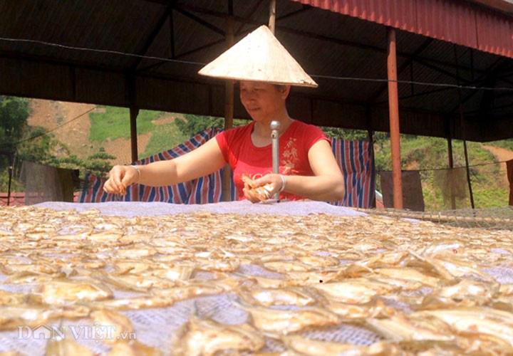 Về Quỳnh Nhai thưởng thức đặc sản cá tép dầu - Ảnh 4.