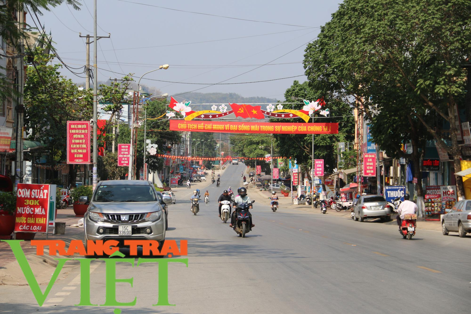 Ảnh: Mai Sơn đổi thay nhờ chương trình nông thôn mới - Ảnh 10.