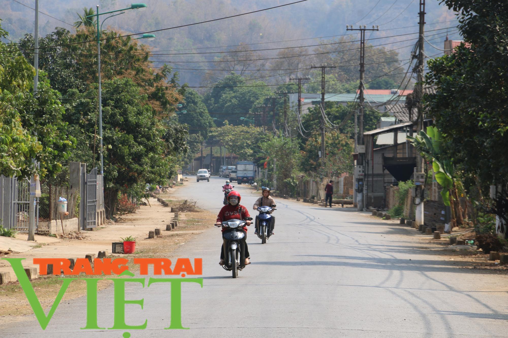 Ảnh: Mai Sơn đổi thay nhờ chương trình nông thôn mới - Ảnh 8.