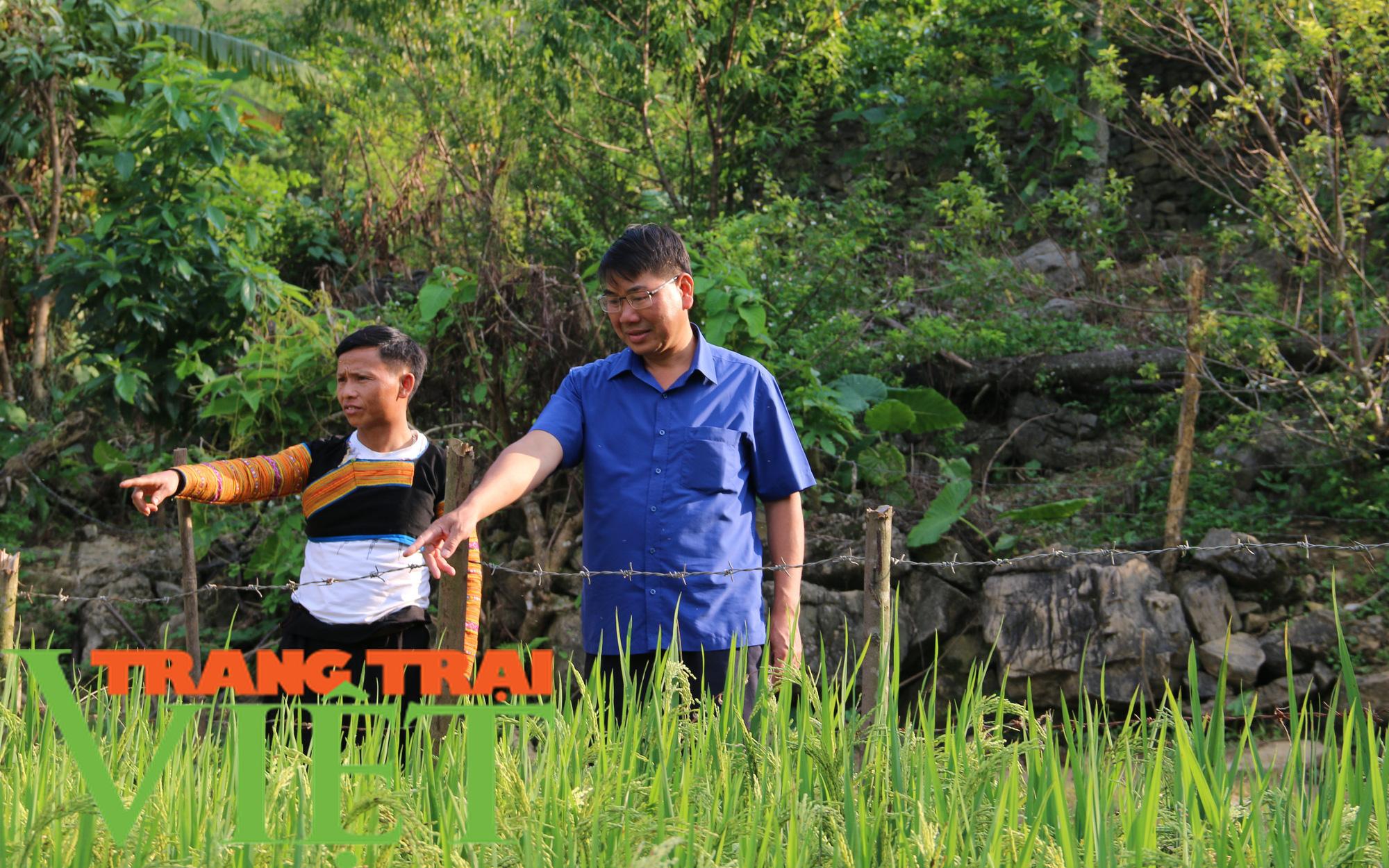 Nông dân dạy nông dân, giúp nhau làm giàu thiết thực