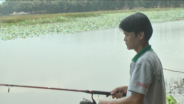 """Câu cá tra """"khủng"""" ở Vườn Quốc gia Tràm Chim, có con dài gần 1m - Ảnh 4."""