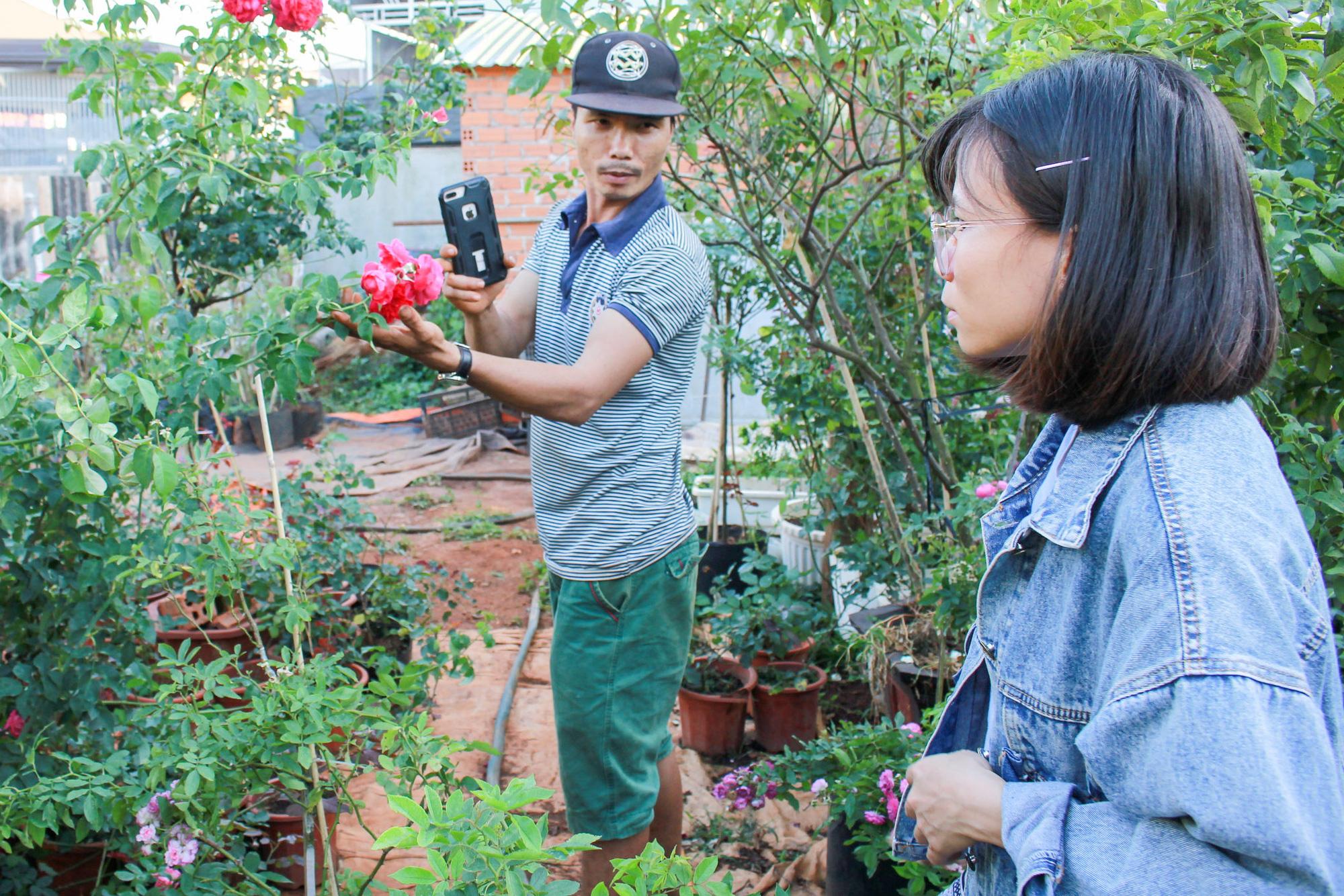Vườn hồng 400 loài đẹp ngẩn ngơ của kỹ sư bỏ phố về núi - Ảnh 2.