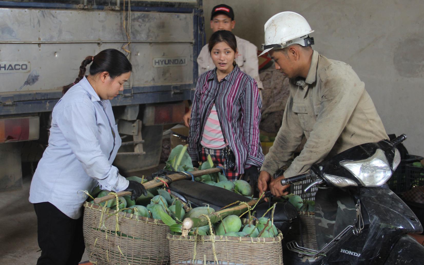 Về xã nông thôn mới, xem nông dân vượt khó làm giàu