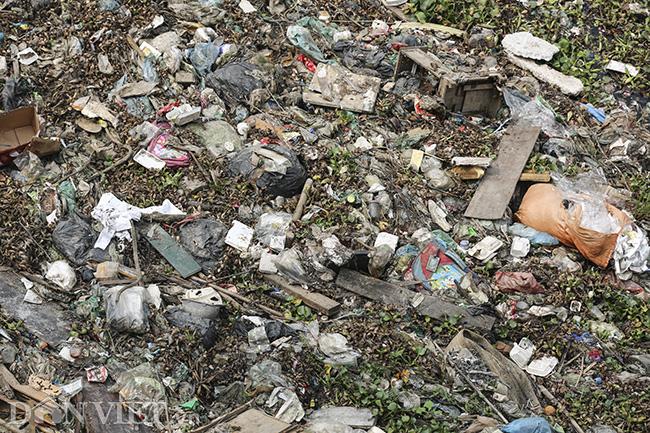 Sông Nhuệ bị bức tử bởi rác - Ảnh 10.