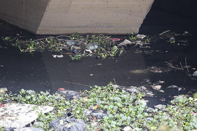 Sông Nhuệ bị bức tử bởi rác - Ảnh 12.