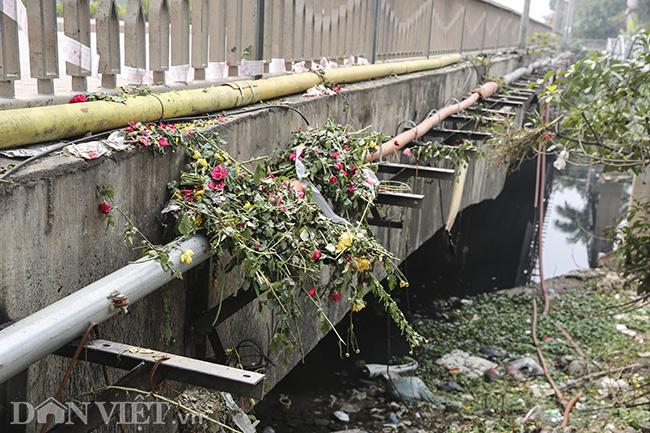 Sông Nhuệ bị bức tử bởi rác - Ảnh 5.