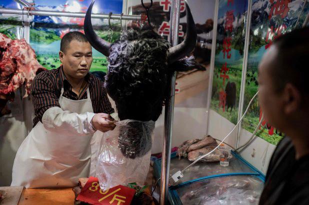 Trung Quốc tiếp tục ra lệnh cấm buôn bán động vật hoang dã  - Ảnh 1.
