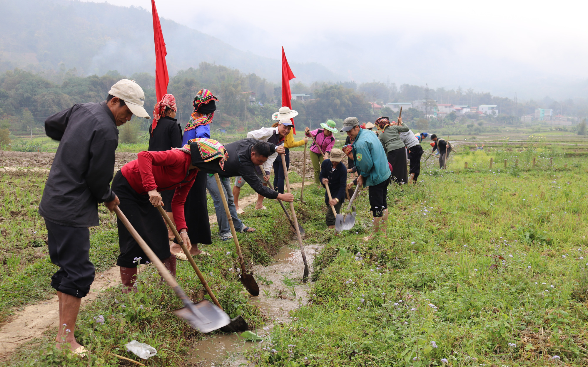 Hội Nông dân Thuận Châu: Tích cực xây dựng nông thôn mới