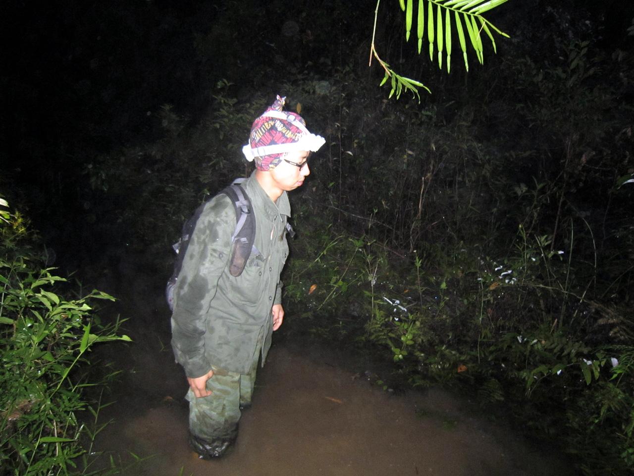 Ly kỳ chuyện đêm lạnh đi tìm loài thạch sùng mí bí ẩn ở Vịnh Hạ Long - Ảnh 4.
