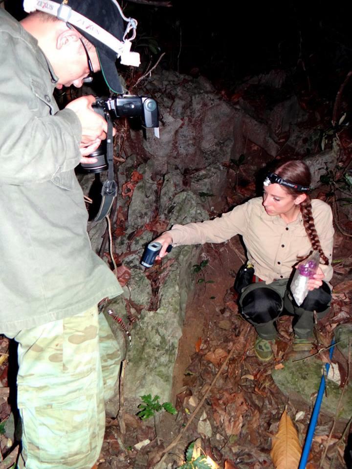 Ly kỳ chuyện đêm lạnh đi tìm loài thạch sùng mí bí ẩn ở Vịnh Hạ Long - Ảnh 5.