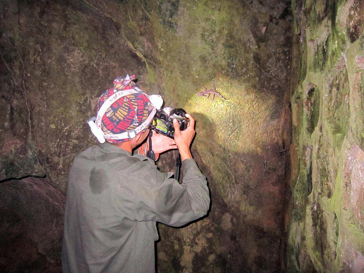 Ly kỳ chuyện đêm lạnh đi tìm loài thạch sùng mí bí ẩn ở Vịnh Hạ Long - Ảnh 6.