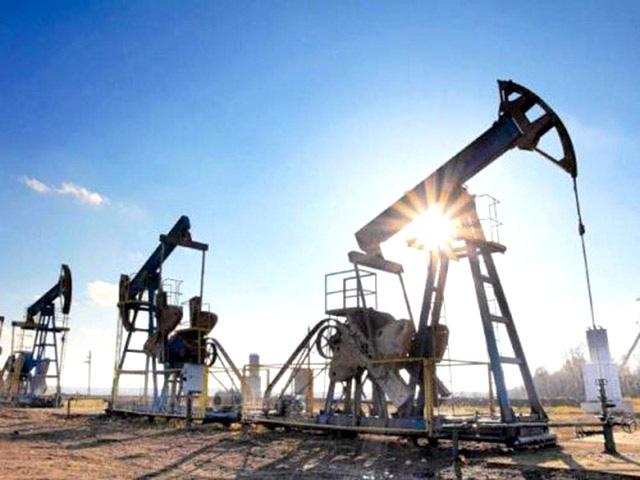 """Cuộc họp của OPEC bị hoãn, giá xăng dầu tiếp tục """"nhảy múa"""" - Ảnh 1."""