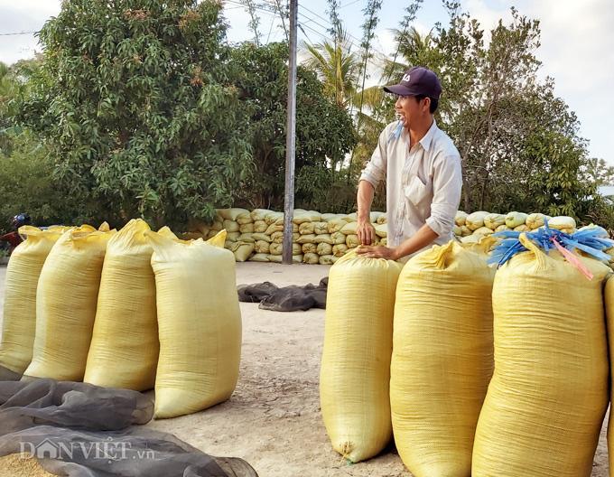 Cà Mau: Kênh nứt nẻ phải thuê xe máy chở lúa đi bán, dân méo mặt - Ảnh 9.