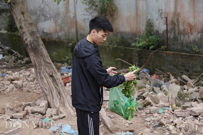 Lạ: Nuôi đàn lợn rừng giữa quận Đống Đa, thủ đô Hà Nội - Ảnh 4.