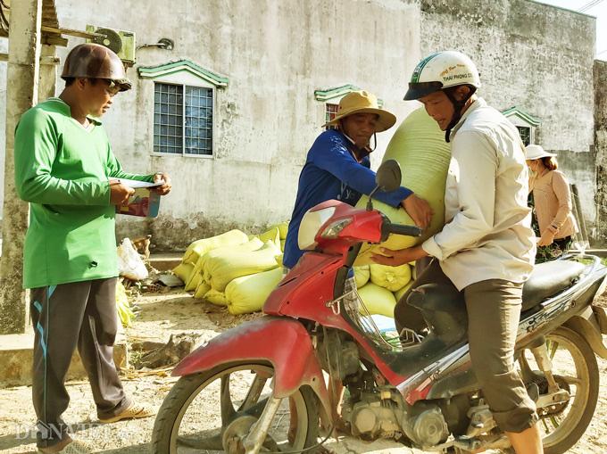 Cà Mau: Kênh nứt nẻ phải thuê xe máy chở lúa đi bán, dân méo mặt - Ảnh 8.