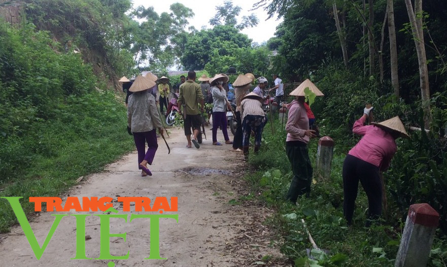 Hội Nông dân Tân Lạc hiến đất, góp công xây dựng nông thôn mới  - Ảnh 1.