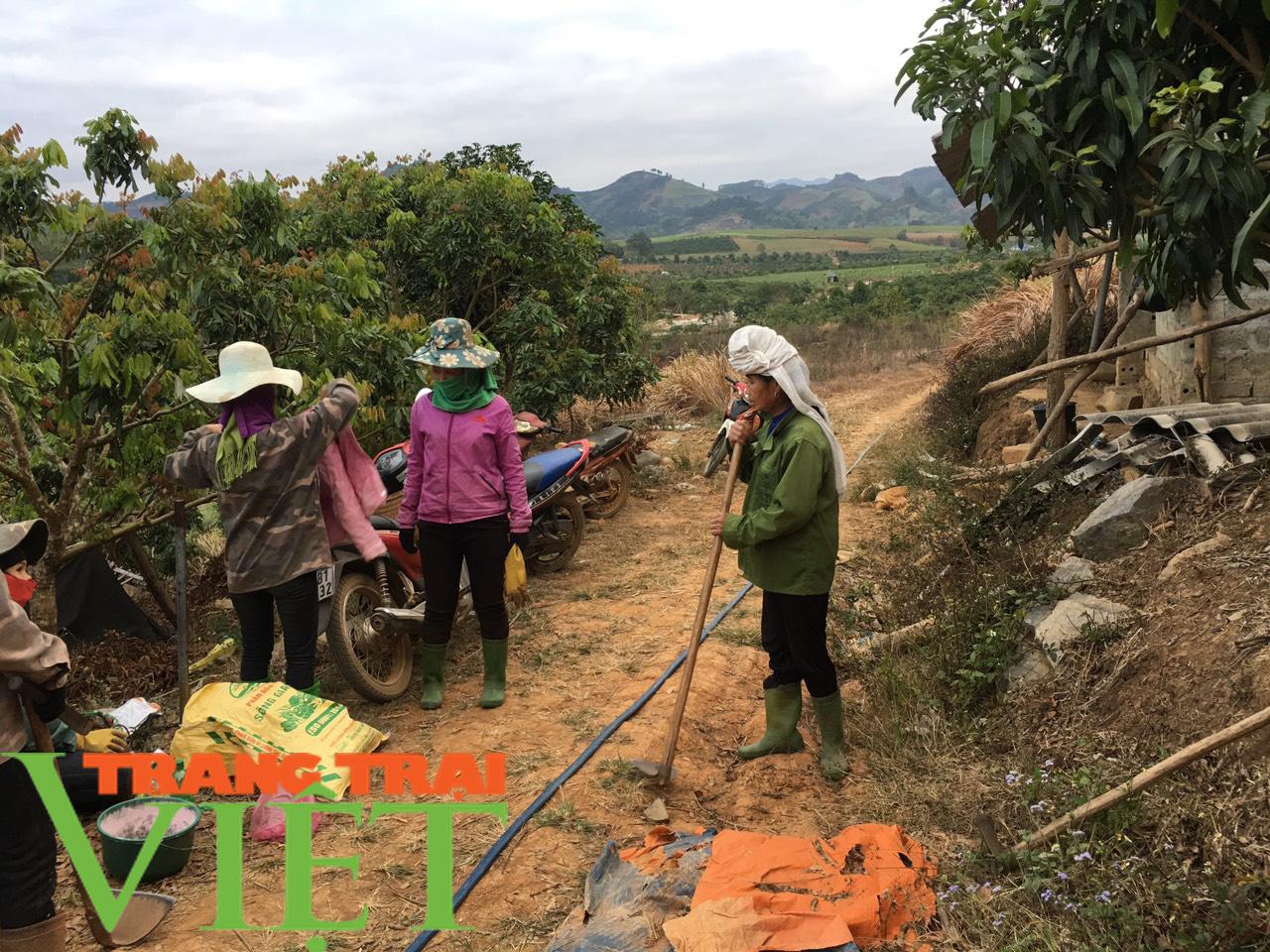 Hội Nông dân Tân Lạc hiến đất, góp công xây dựng nông thôn mới  - Ảnh 5.