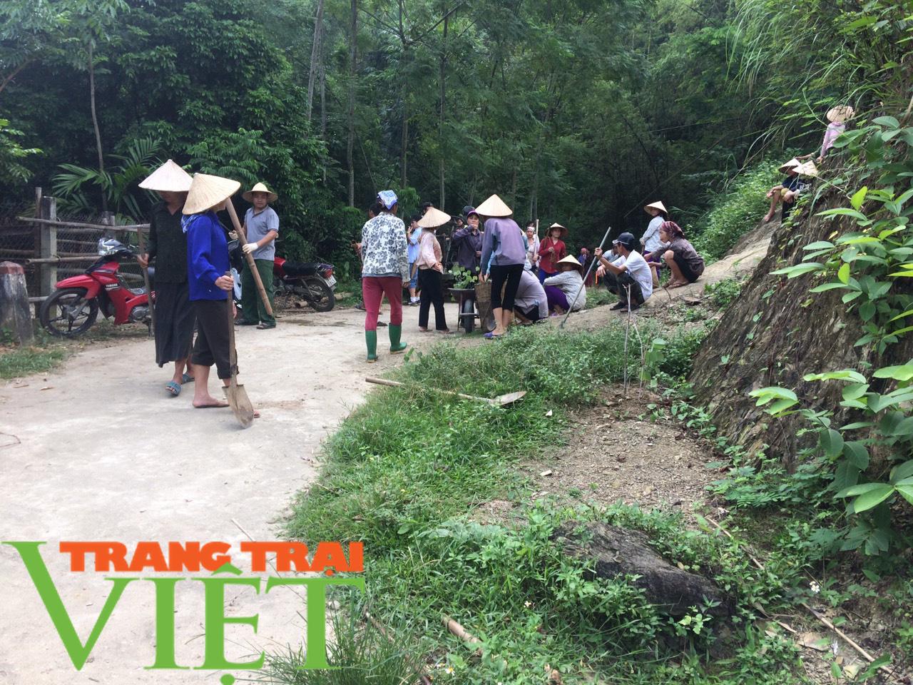 Hội Nông dân Tân Lạc hiến đất, góp công xây dựng nông thôn mới  - Ảnh 4.
