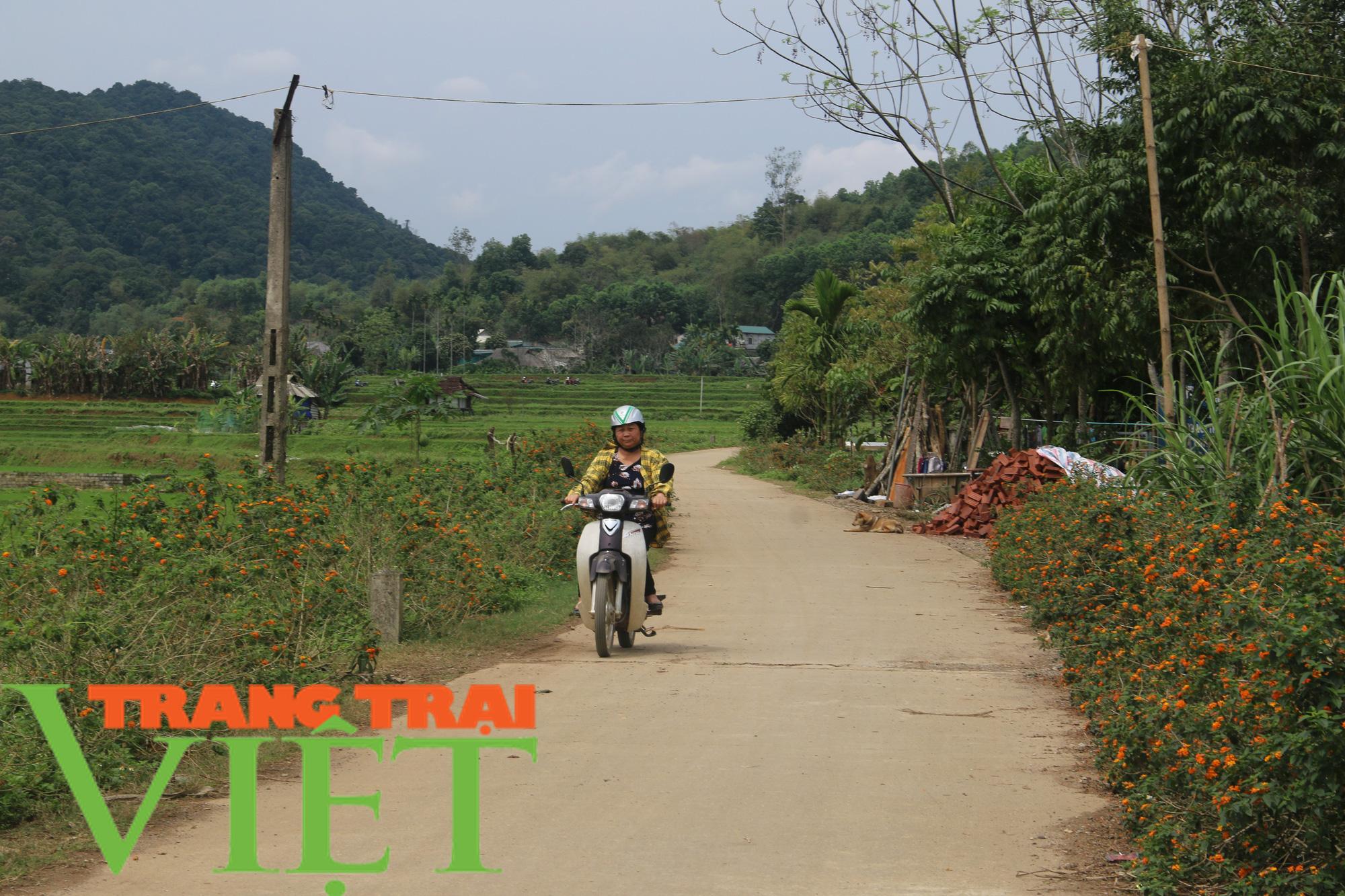 Hội Nông dân Tân Lạc hiến đất, góp công xây dựng nông thôn mới  - Ảnh 3.