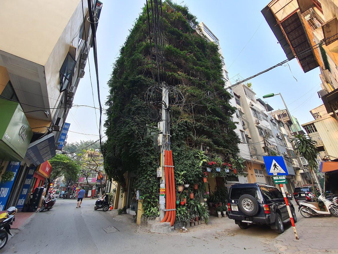Nhà cây 5 tầng phủ kín hoa giấy ở Hà Nội, ai đi qua cũng dừng lại ngắm - Ảnh 1.