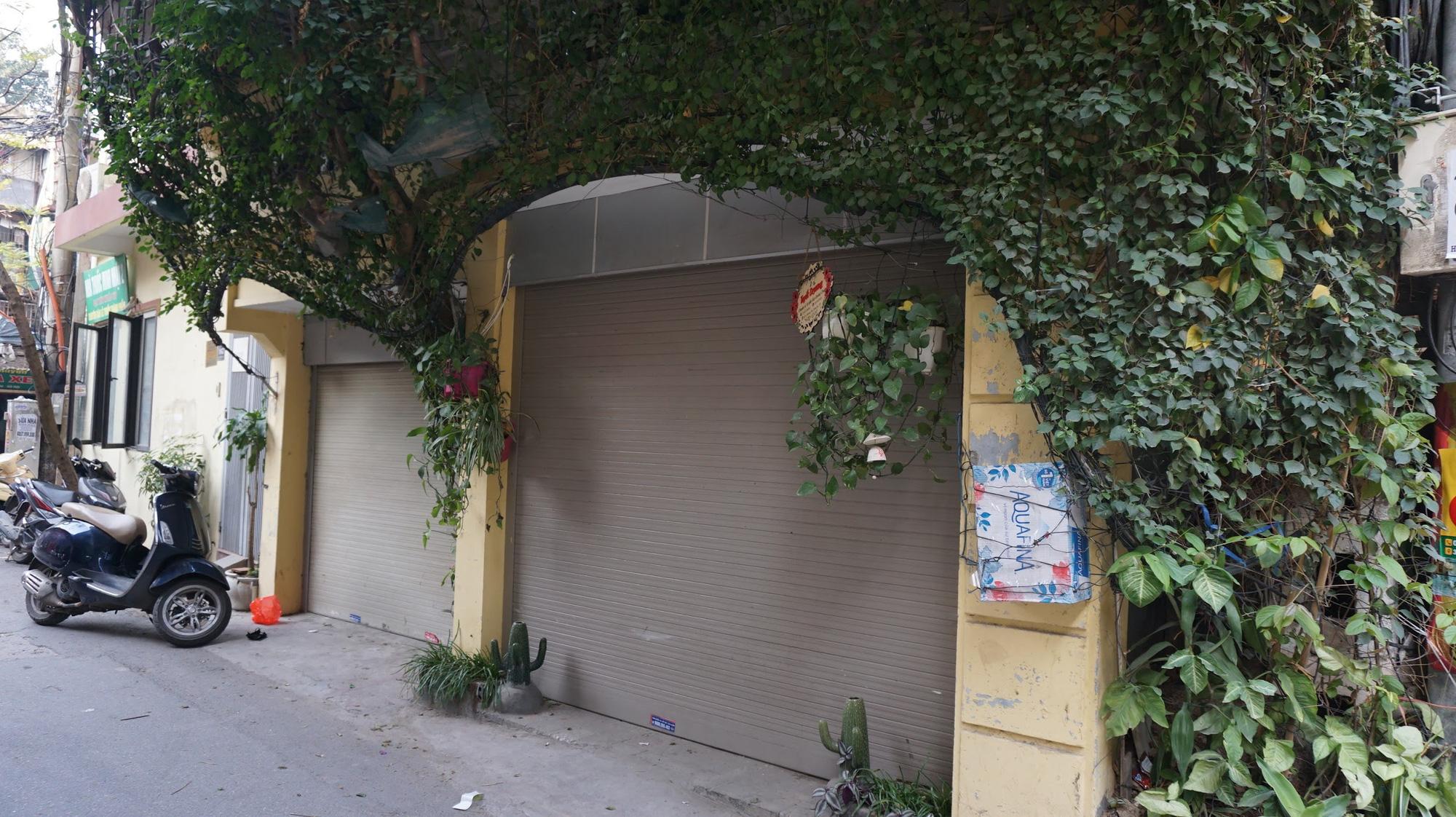 Nhà cây 5 tầng phủ kín hoa giấy ở Hà Nội, ai đi qua cũng dừng lại ngắm - Ảnh 5.