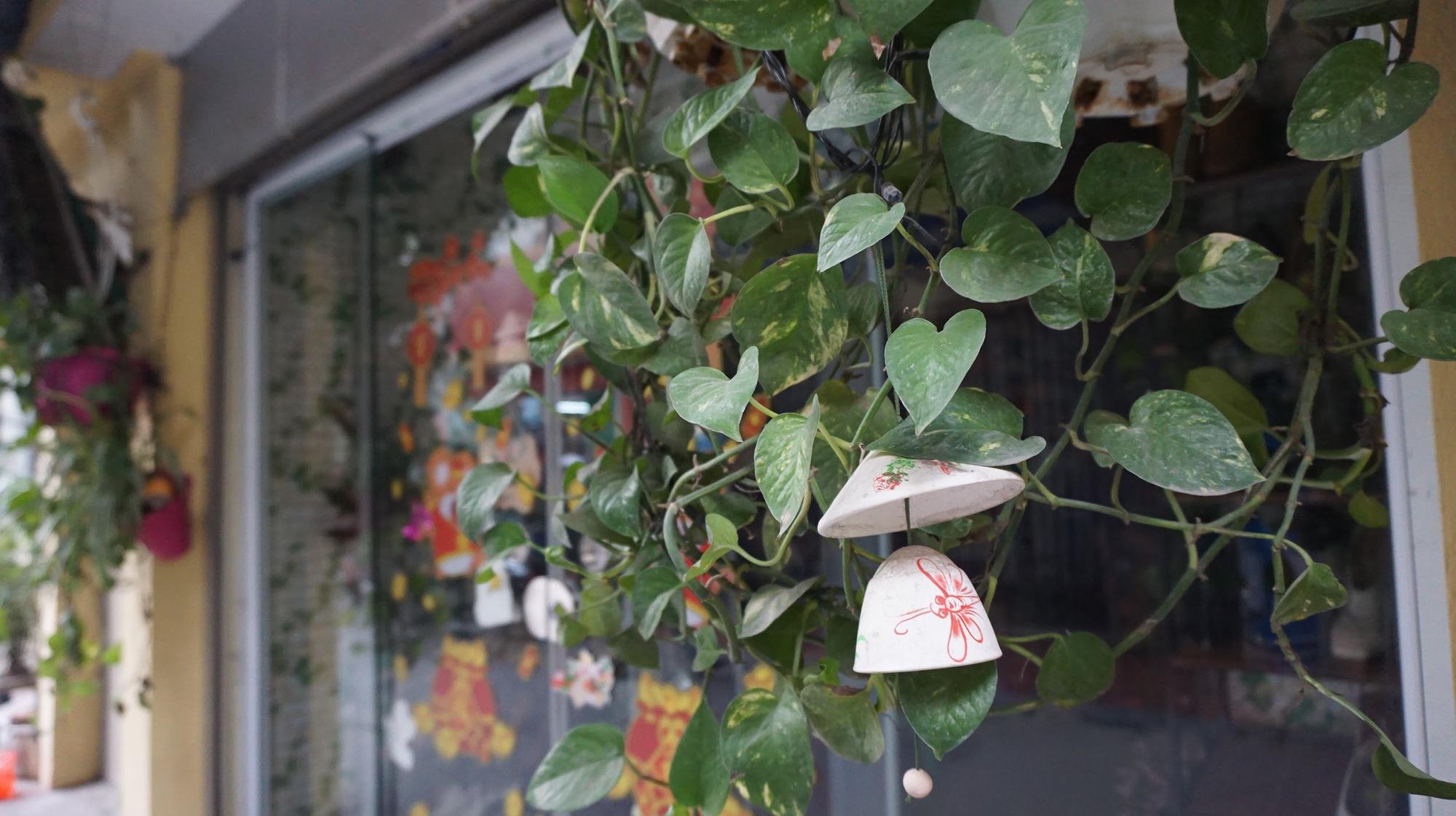 Nhà cây 5 tầng phủ kín hoa giấy ở Hà Nội, ai đi qua cũng dừng lại ngắm - Ảnh 7.