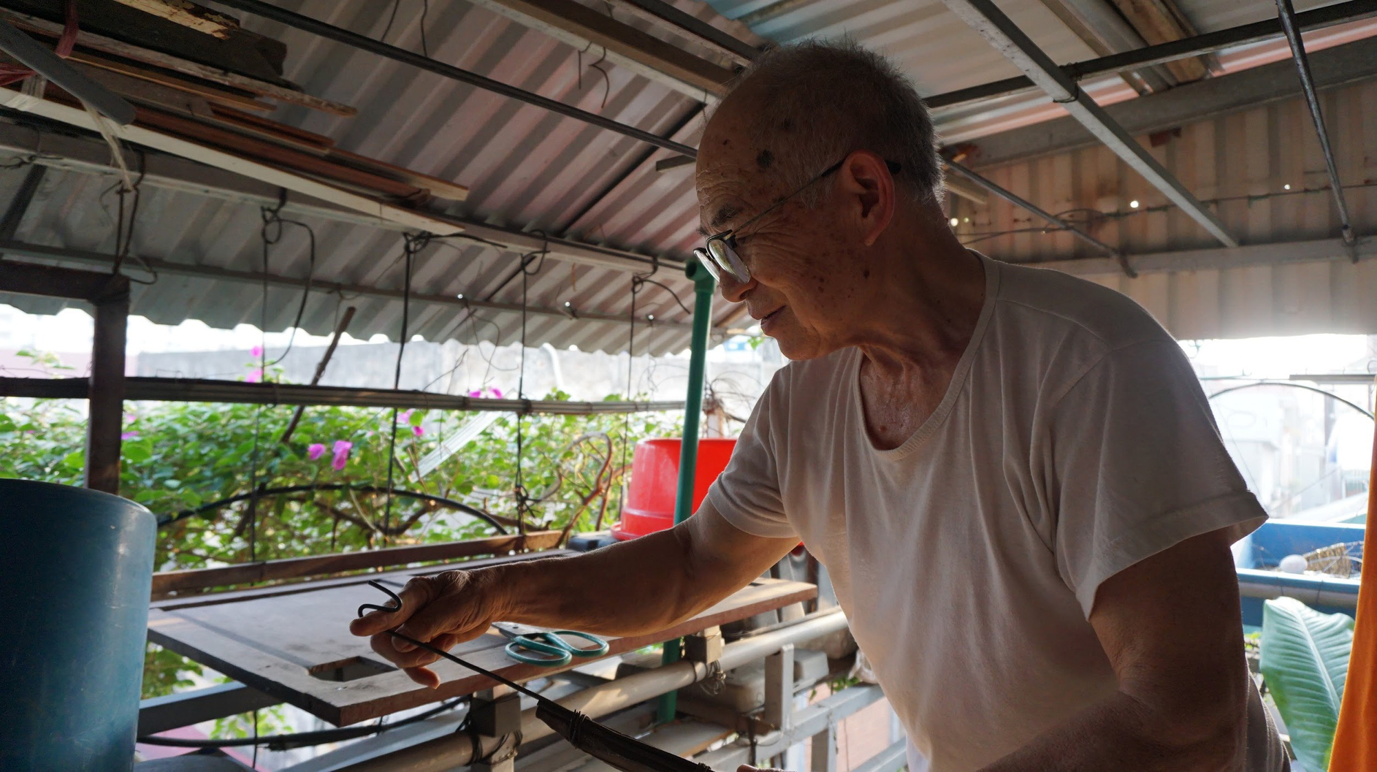 Nhà cây 5 tầng phủ kín hoa giấy ở Hà Nội, ai đi qua cũng dừng lại ngắm - Ảnh 12.