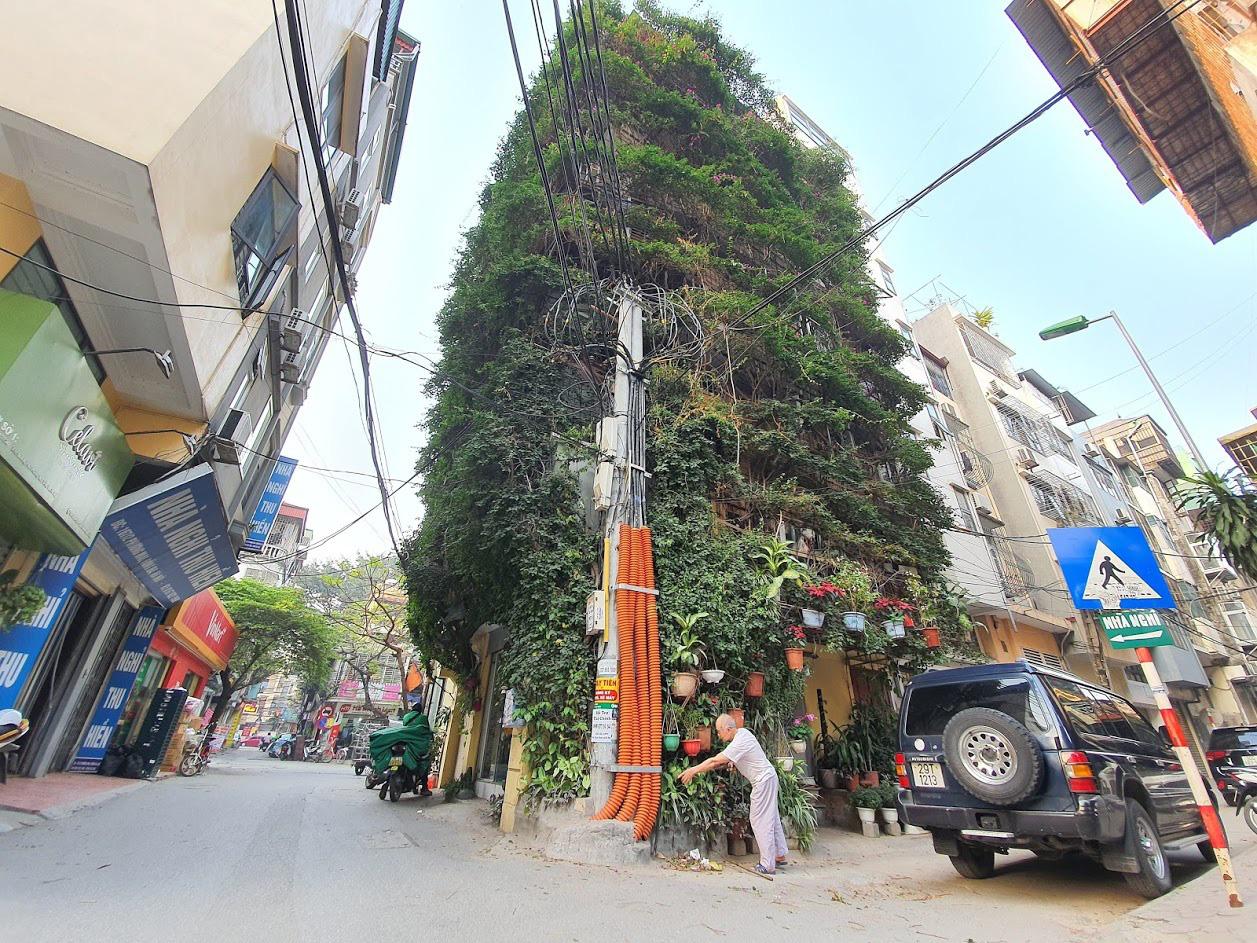 Nhà cây 5 tầng phủ kín hoa giấy ở Hà Nội, ai đi qua cũng dừng lại ngắm - Ảnh 15.