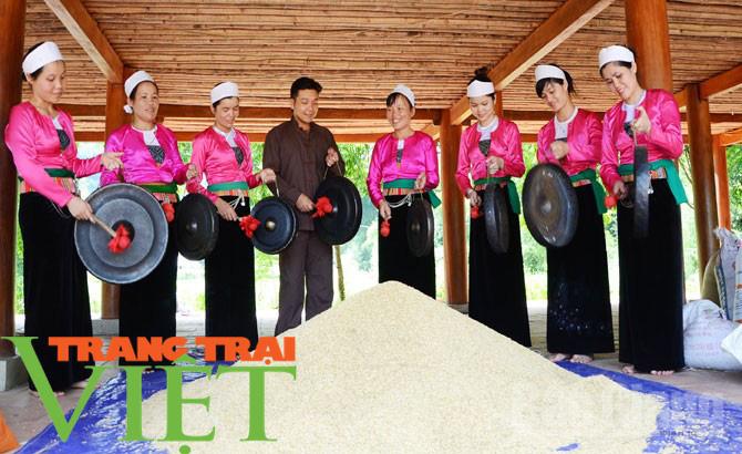 Hoà Bình: Đẩy mạnh công tác xây dựng nông thôn mới - Ảnh 7.