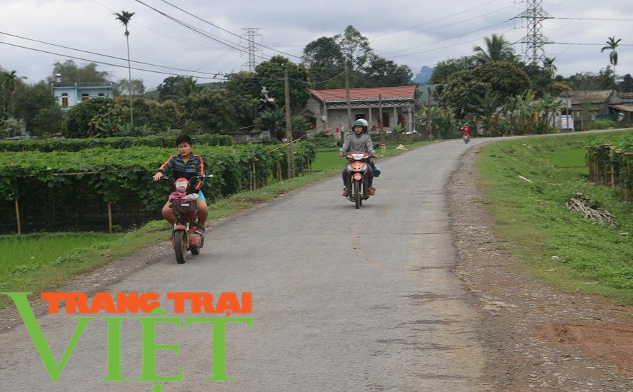 Hoà Bình: Đẩy mạnh công tác xây dựng nông thôn mới - Ảnh 8.