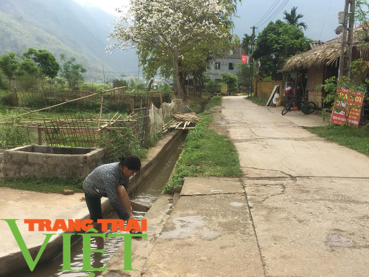 Hoà Bình: Đẩy mạnh công tác xây dựng nông thôn mới - Ảnh 5.