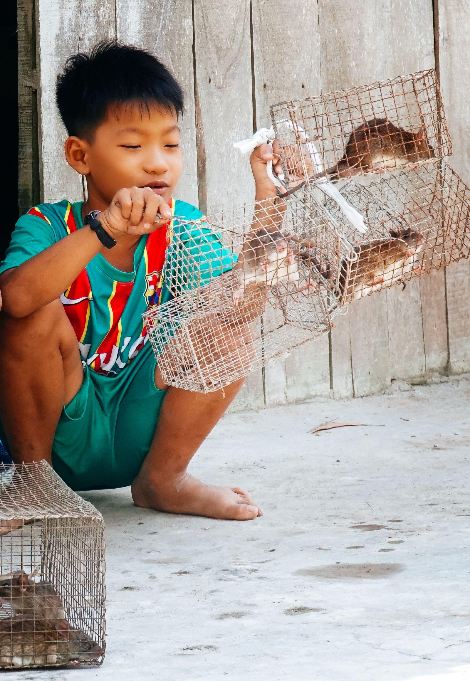 """Theo chân cha con anh Chuột săn bắt chuột trên """"Đồng Chó Ngáp"""" - Ảnh 5."""