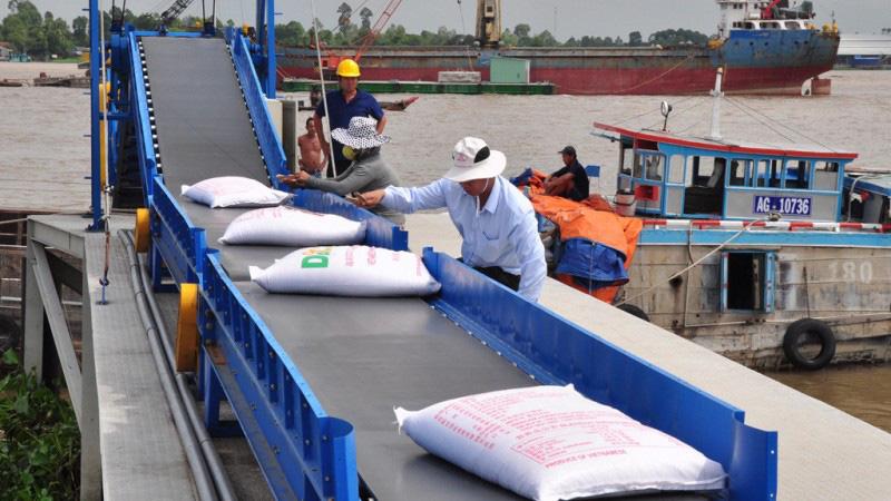 Kết luận chính thức của Thủ tướng về việc xuất khẩu gạo - Ảnh 1.