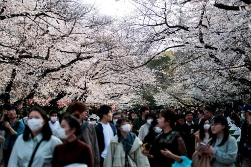 Tự tin nền y tế phát triển, người dân Nhật lạc quan về đại dịch Covid-19 - Ảnh 1.