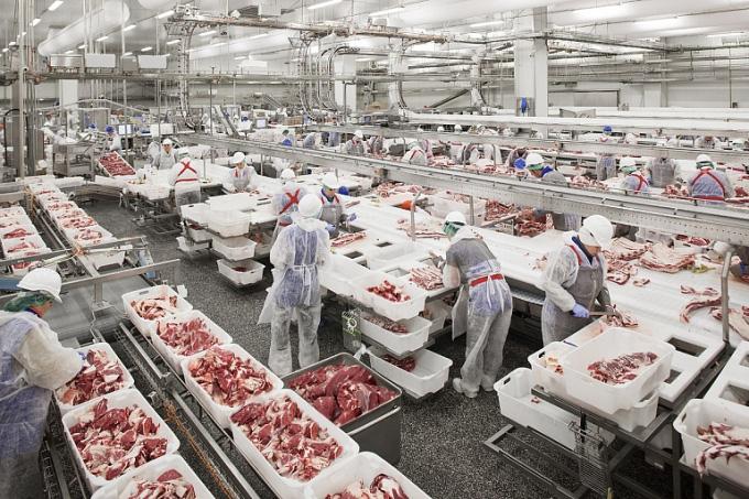 1.500 tấn thịt lợn Nga đổ bộ vào Việt Nam, sẽ phân phối ở đâu? - Ảnh 1.