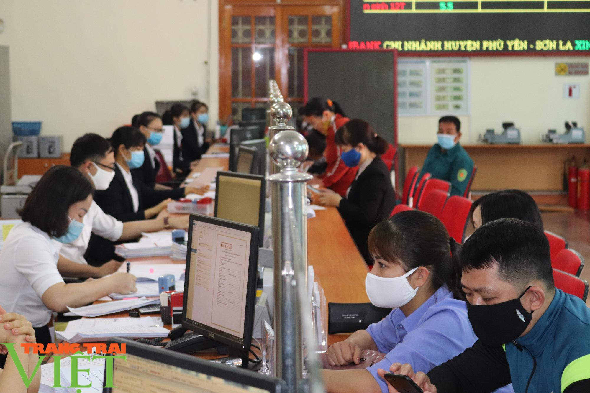 Đồng vốn Agribank tiếp sức, nông dân Phù Yên trở thành triệu phú - Ảnh 6.