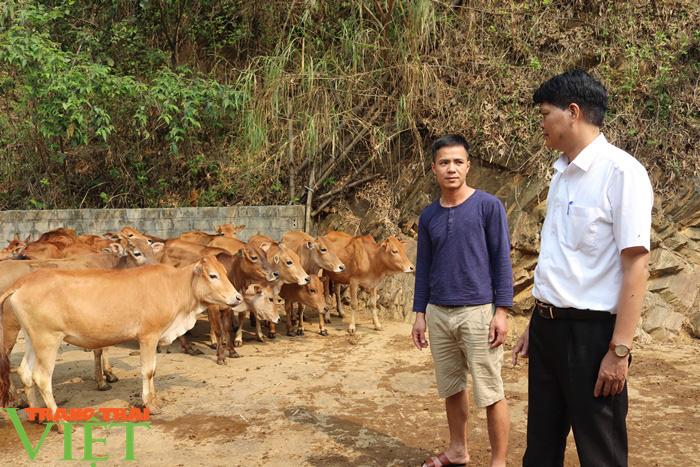 Đồng vốn Agribank tiếp sức, nông dân Phù Yên trở thành triệu phú - Ảnh 1.