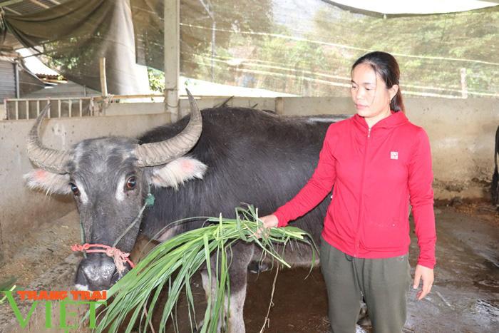 Đồng vốn Agribank tiếp sức, nông dân Phù Yên trở thành triệu phú - Ảnh 3.