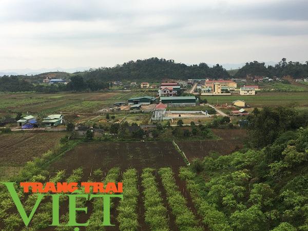 Mộc Châu ứng dụng công nghệ cao vào sản xuất nông nghiệp - Ảnh 5.