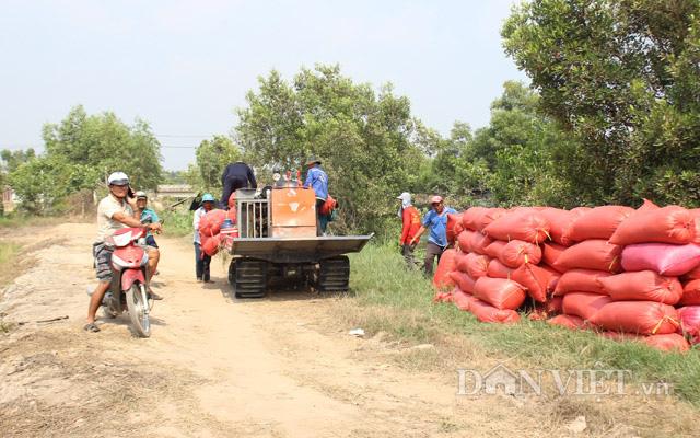 Sau đề xuất tiếp tục xuất khẩu gạo: Thị trường lúa gạo lại sôi động - Ảnh 2.