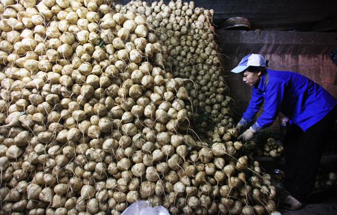 Hà Nội tăng cường đảm bảo an toàn thực phẩm chợ đầu mối - Ảnh 1.