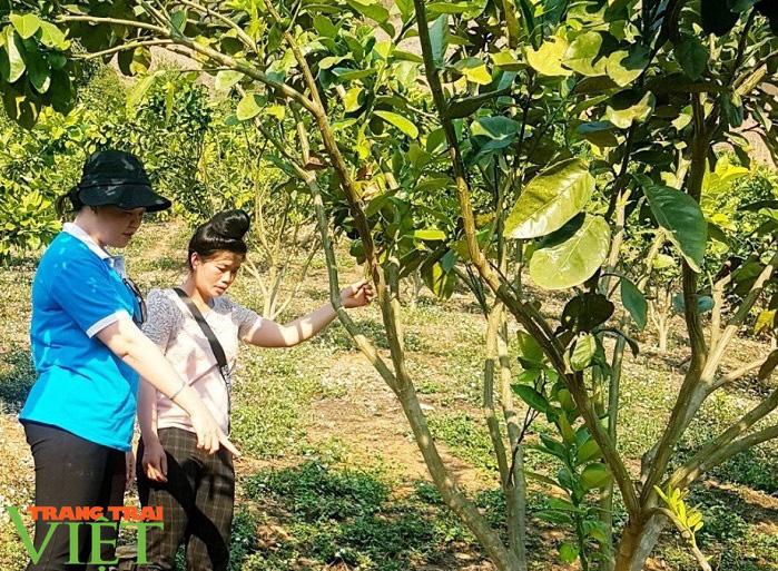 Nông thôn mới Mai Sơn- Phụ nữ làm chủ thể - Ảnh 1.