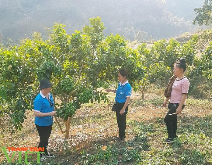 Nông thôn mới Mai Sơn- Phụ nữ làm chủ thể - Ảnh 4.