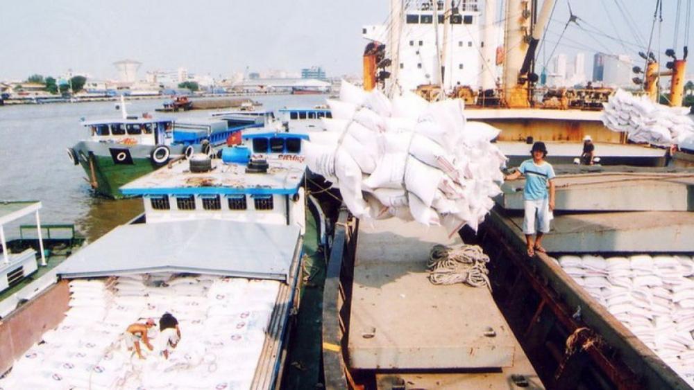 Một doanh nghiệp xuất khẩu hàng trăm triệu USD gạo 'ngồi trên đống lửa' vì 'chờ' chính sách - Ảnh 1.