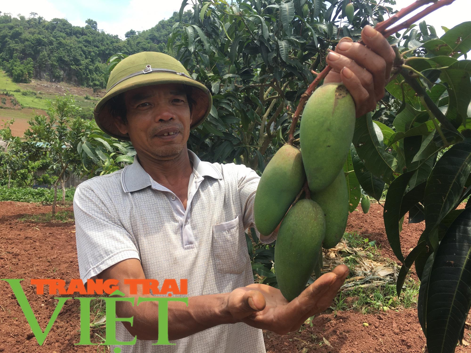 Mộc Châu phát triển nông nghiệp hữu cơ, hướng đi bền vững cho nông dân  - Ảnh 5.
