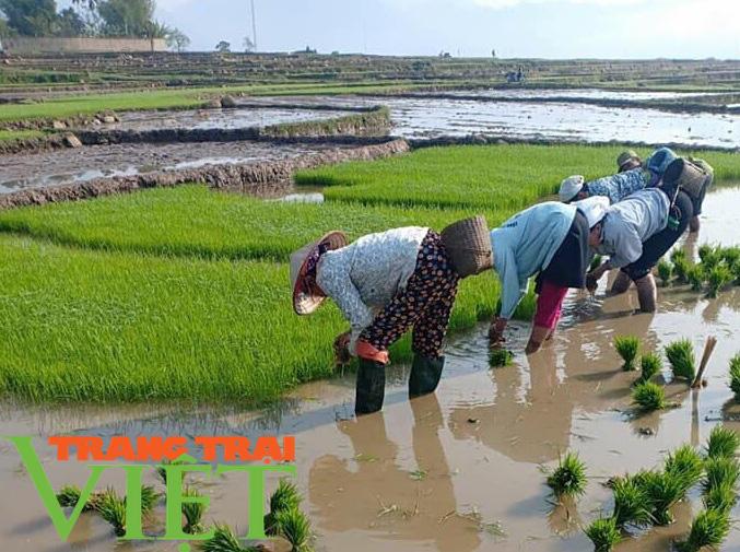 Ảnh: Nông thôn Yên Châu ngày càng thay da đổi thịt - Ảnh 4.