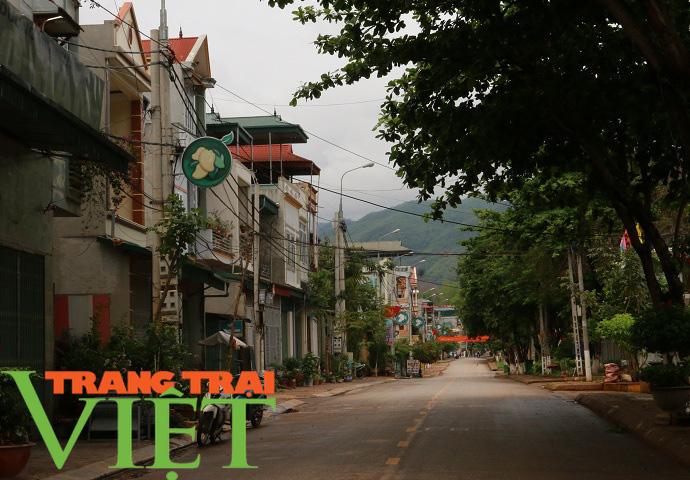 Ảnh: Nông thôn Yên Châu ngày càng thay da đổi thịt - Ảnh 2.