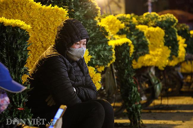 Chợ hoa lớn nhất miền Bắc ế ẩm, người bán buồn bã co ro vì lạnh - Ảnh 11.