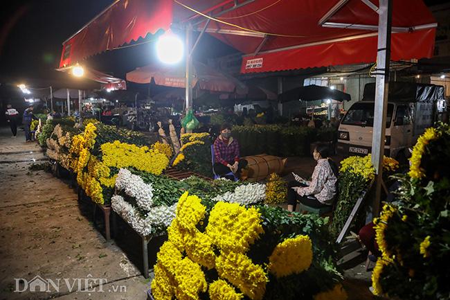 Chợ hoa lớn nhất miền Bắc ế ẩm, người bán buồn bã co ro vì lạnh - Ảnh 3.